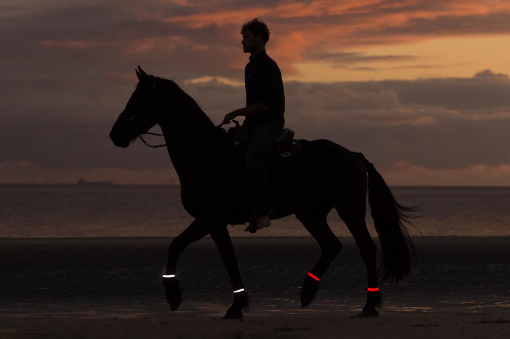LED paardenverlichting, paarden verlichting en reflectie paarden veiligheidsverlichting